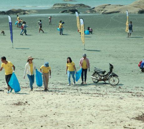 Beach cleaning (003)